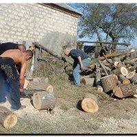 заготовка  дров. :: Ivana