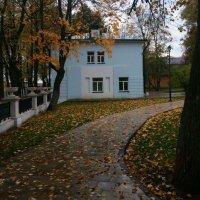 Такая  красивая  осень... :: Наталья Соколова