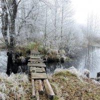 По мосточку в зиму . :: Hаталья Беклова