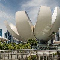 Музей искусства и науки (ArtScience Museum), Сингапур. :: Edward J.Berelet