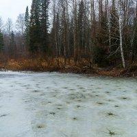 По тонкому осеннему льду :: Владимир Деньгуб