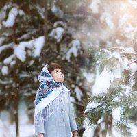 Зимний лес :: Яна Спирина