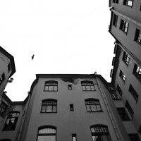 крыши :: Андрей Маталин