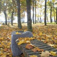 Утро осеннего парка :: Василь Веренич