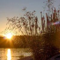 Закат на Ладоге. :: Николай Т