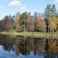 Осень :: Владимир Холодницкий