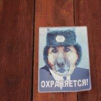 Предупреждение на воротах :: Людмила Монахова