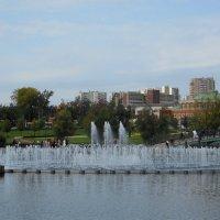 Светомузыкальный фонтан Парк Царицыно :: Александр Качалин