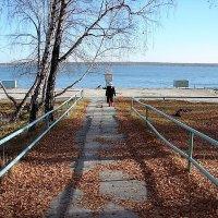 дорога к озеру... :: Татьяна Котельникова