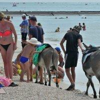 The Box - пляж эмоций. У кромки моря трафик очень напряжённый был... :: Александр Резуненко