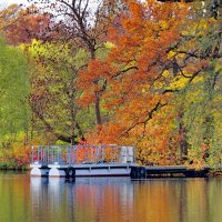 И осень прекрасна, когда на душе весна.. :: Светлана Петошина
