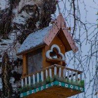 Птичий домик :: Валерий Симонов