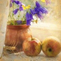 Этюд с яблоками :: Ольга