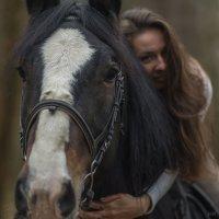 Лошадь в тумане :: Николай Нестеренко