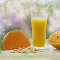 Сок  из тыквы с апельсином :: galina tihonova