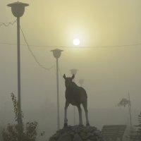 лось в тумане :: Надежда Водорезова