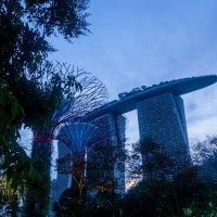 Singapore :: Олеся Семенова