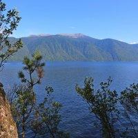 Телецкое озеро, Республика Алтай :: ДмитрийМ Меньшиков