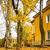 Осень :: Людмила