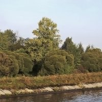 Осень на канале :: Nikolay Monahov