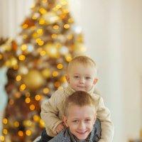 Новогодняя сказка Захарика и Романа :: Кристина Беляева