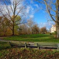 Светлая осень... :: Galina Dzubina