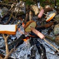 Пикник в осеннем лесу :: Михаил Шабанов