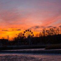утро рассвет в парке :: Вадим Бурмистров