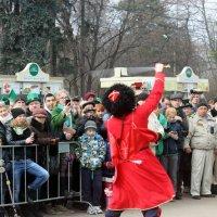 Шашка в  руках  казака летает! :: Виталий Селиванов