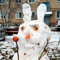 Какой ноябрь, такой и снеговик..:) :: Андрей Заломленков