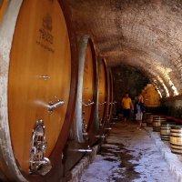 Монастырские вина :: Николай Рогаткин