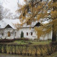 Прогулки по Новодевичьему монастырю :: Маера Урусова