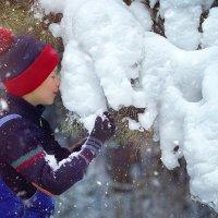 Сказки зимнего леса :: Марина Кузьмина