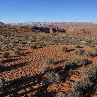 Вечер. Идём по пустыне к р.Колорадо (Аризона, США) :: Юрий Поляков