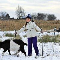 А козе не дали лыжи :: Николай Масляев