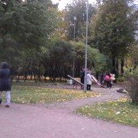 Прогулка по парку :: Svetlana Lyaxovich