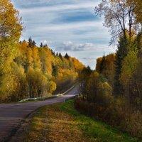 Дорога домой :: Oleg S