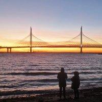 на закате на Крестовском острове :: Елена