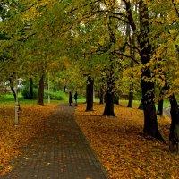 Прогулка в Осени :: Сергей Карачин