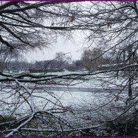 Уже снежило... :: Николай Дони
