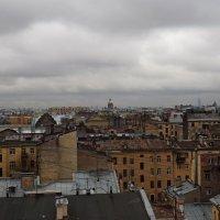 Крыши Питера :: Софья Борисова
