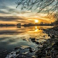 morning in November on the lake :: Dmitry Ozersky