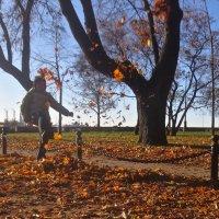игра с осенними листьями :: Елена