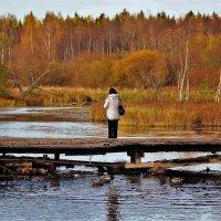 С думой об осени... :: Sergey Gordoff