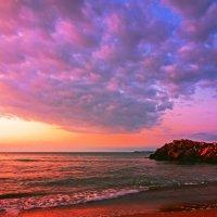 Утро на море :: Alexander Andronik