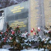 Цветы, как капли крови, пролитой теми, кто дал нам возможность жить. :: Виталий Павлов
