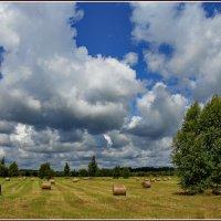 Пейзаж с облаками :: Татьяна Ивановна