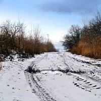 Ложится поутру пороша белая.. :: Андрей Заломленков