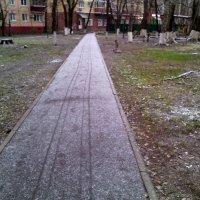 Говорят, что у каждого своя дорога, хоть и идут все по одной... :: Ольга Кривых