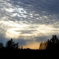 Небесная воронка :: Светлана Игнатьева